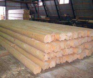 Из какого дерева строит баню, правильный выбор древесины!