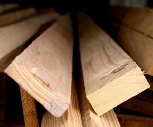 Древесина и ее применение в строительстве