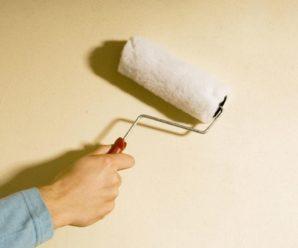 Как грунтовать стены перед поклейкой обоев в своем доме и нужна ли грунтовка?