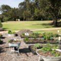 Садовые сообщества ждет повышение членских взносов в 2019 г.