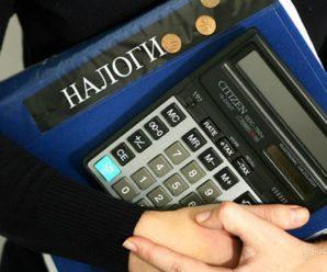 Сколько налогов платят жители РФ.