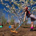 Почему, оптимальное время для работы на огороде 3 часа? Правильные и не правильные позиции.