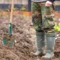 Основные ошибки огородников, из-за которых получается плохой урожай.