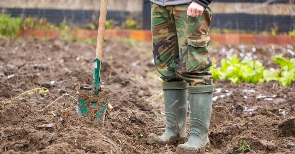 Ошибки огородников