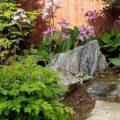 Тенелюбивые растения которые прекрасно украсят ваш участок.