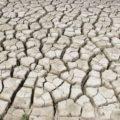 Почему после полива земли на огороде трескается земля? Как этого избежать.