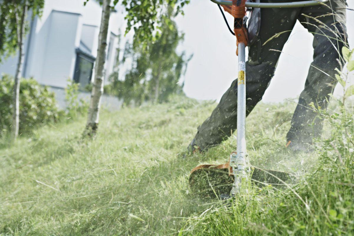 Штраф за траву
