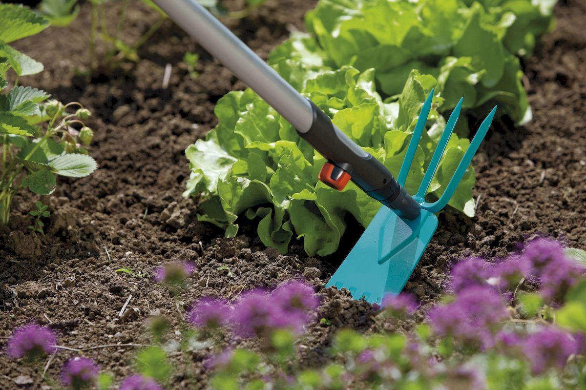 Окучивание огородных культур