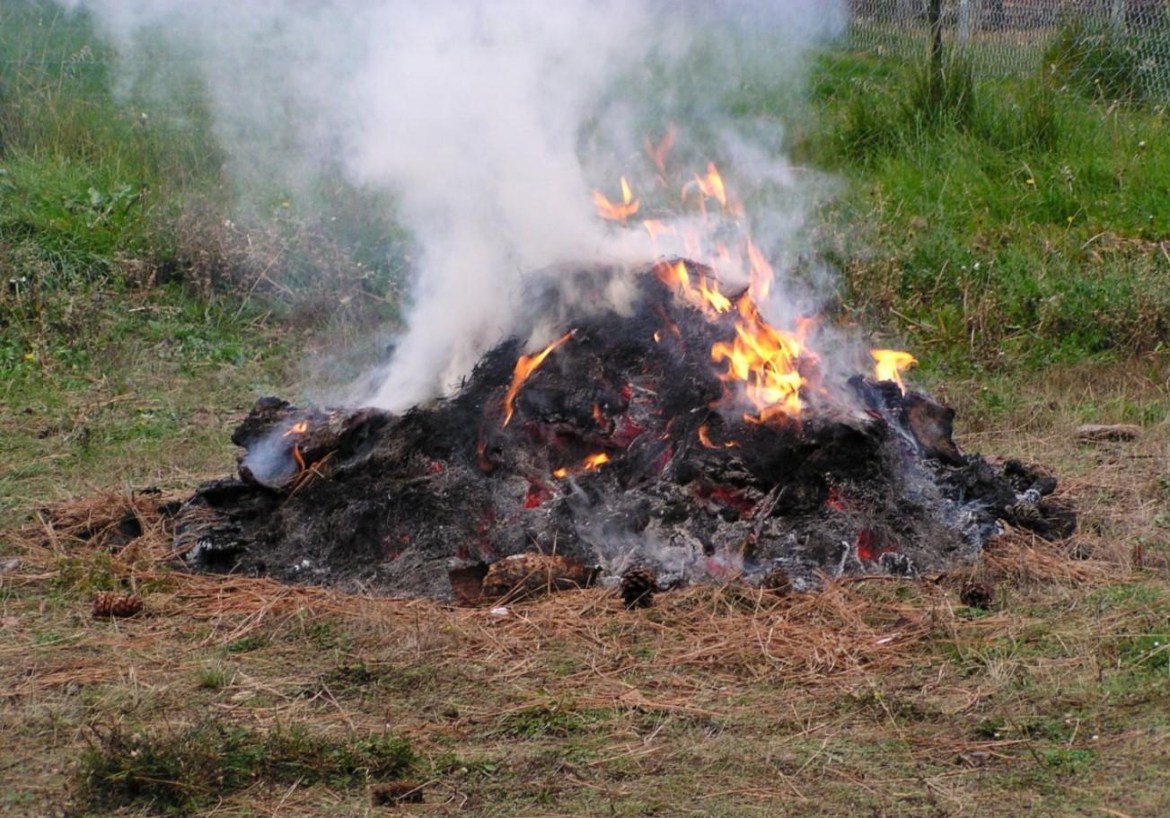 сжигания мусора