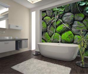 Список растений которыми можно украсить ванную комнату