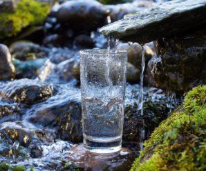 Родниковая вода: пить или не пить?