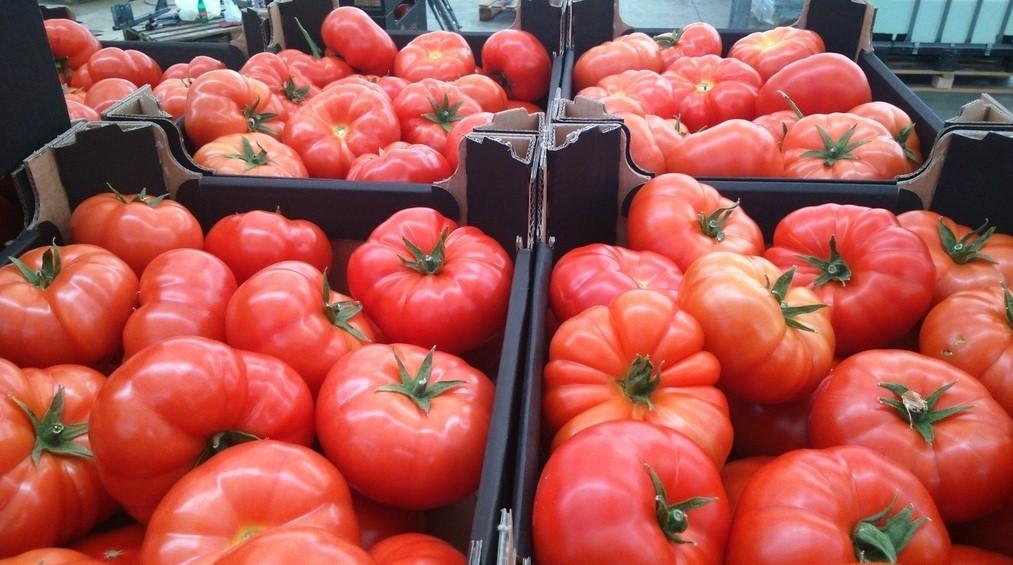Безвкусные магазинные помидоры