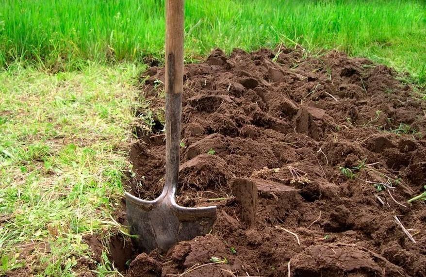 Перекопка земли в огороде