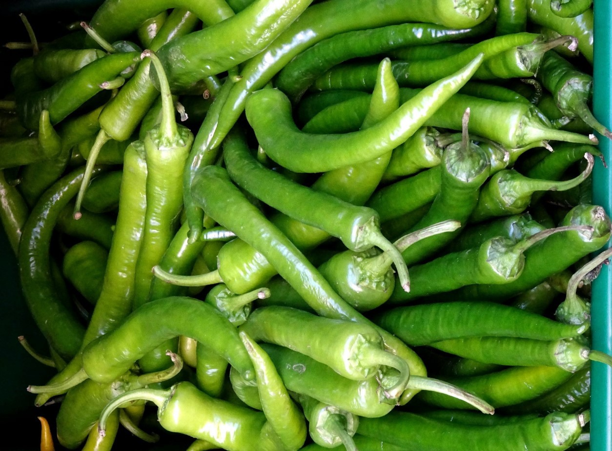 Зеленый перец